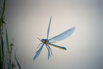 The Big Bug Room, Dragon Fly