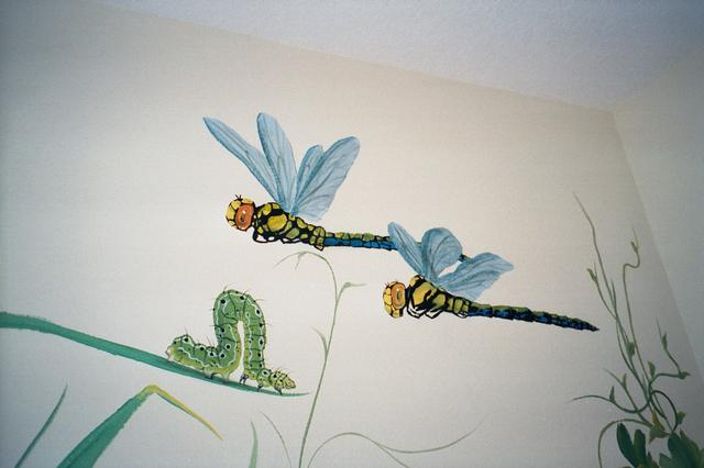 The Big Bug Room, Dragon Flies